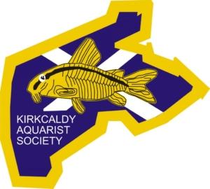 Kirkcaldy_Aquarist_Society5-1024x921 logo